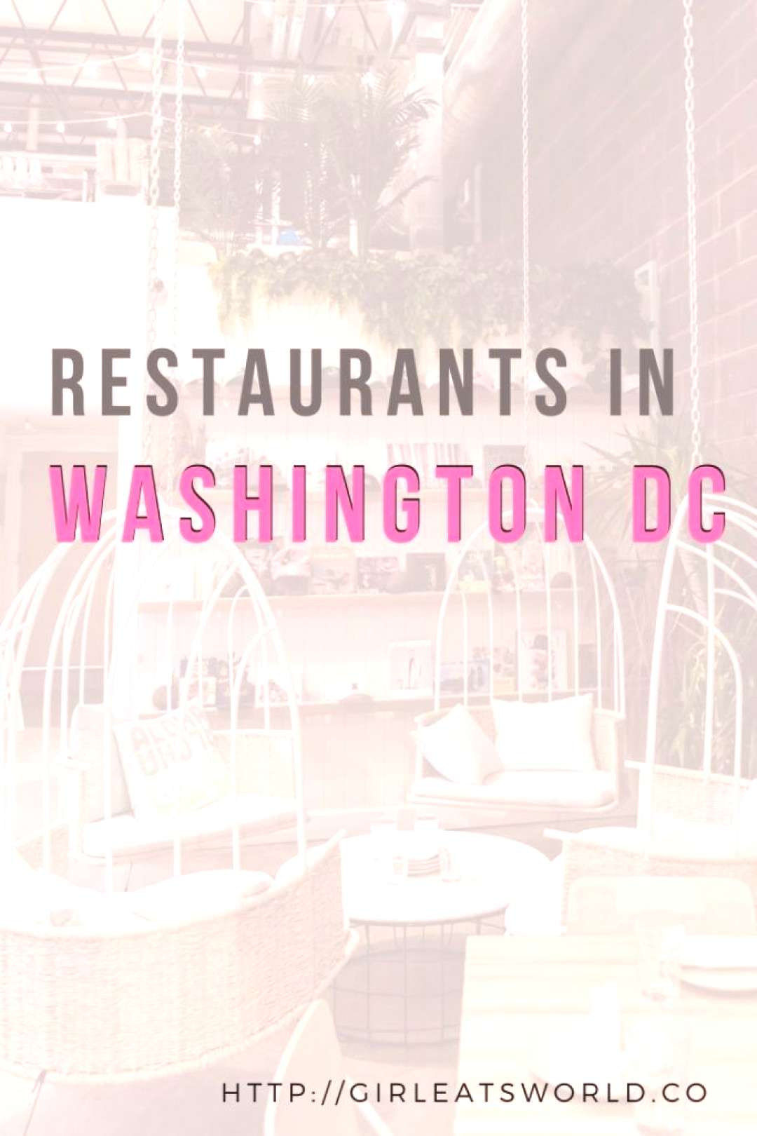 19 Amazing Restaurants to Check Out in Washington DC,  19 Amazing Restaurants to Check Out in Washi