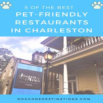 5 of the Best Pet-Friendly Restaurants in Charleston, SC 5 of the Best Pet-Friendly Restaurants in