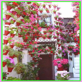 81 reference of patio Andaluces restaurants patio Andaluces restaurants-#patio Please Click Link To