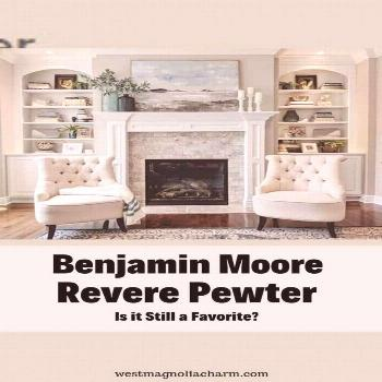 Benjamin Moore Revere Pewter has been a super popular paint color for so long. But with many other