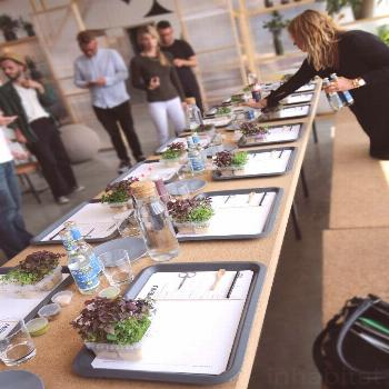 IKEA&;s Space10 is working on on-site hydroponic farms for restaurants IKEA&;s Space10 is working o