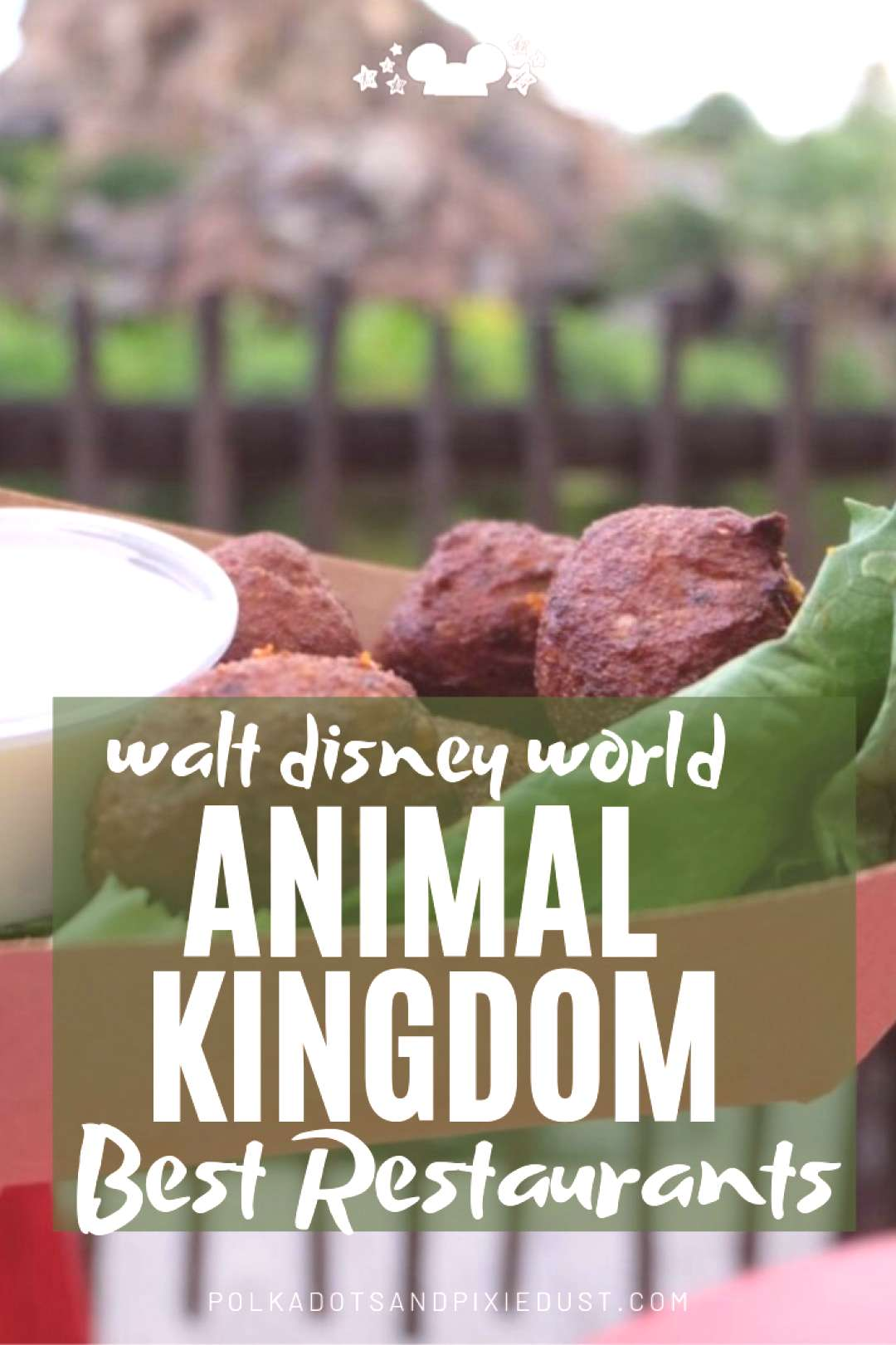 Best Disney Restaurants at Animal Kingdom and What to Skip - Polka Dots and Pixie Dust Disney... Be